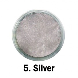 Acril Paint - no.05. - Silver