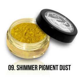 Shimmer Pigment Dust - 09 - 2g