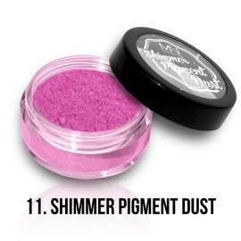 Shimmer Pigment Dust - 11 - 2g