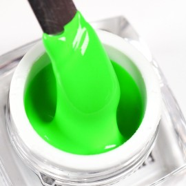 Spider Gel - Neon Green - 4g